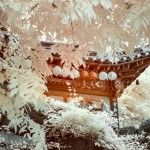 Pictures of Korea – Infrared Photography