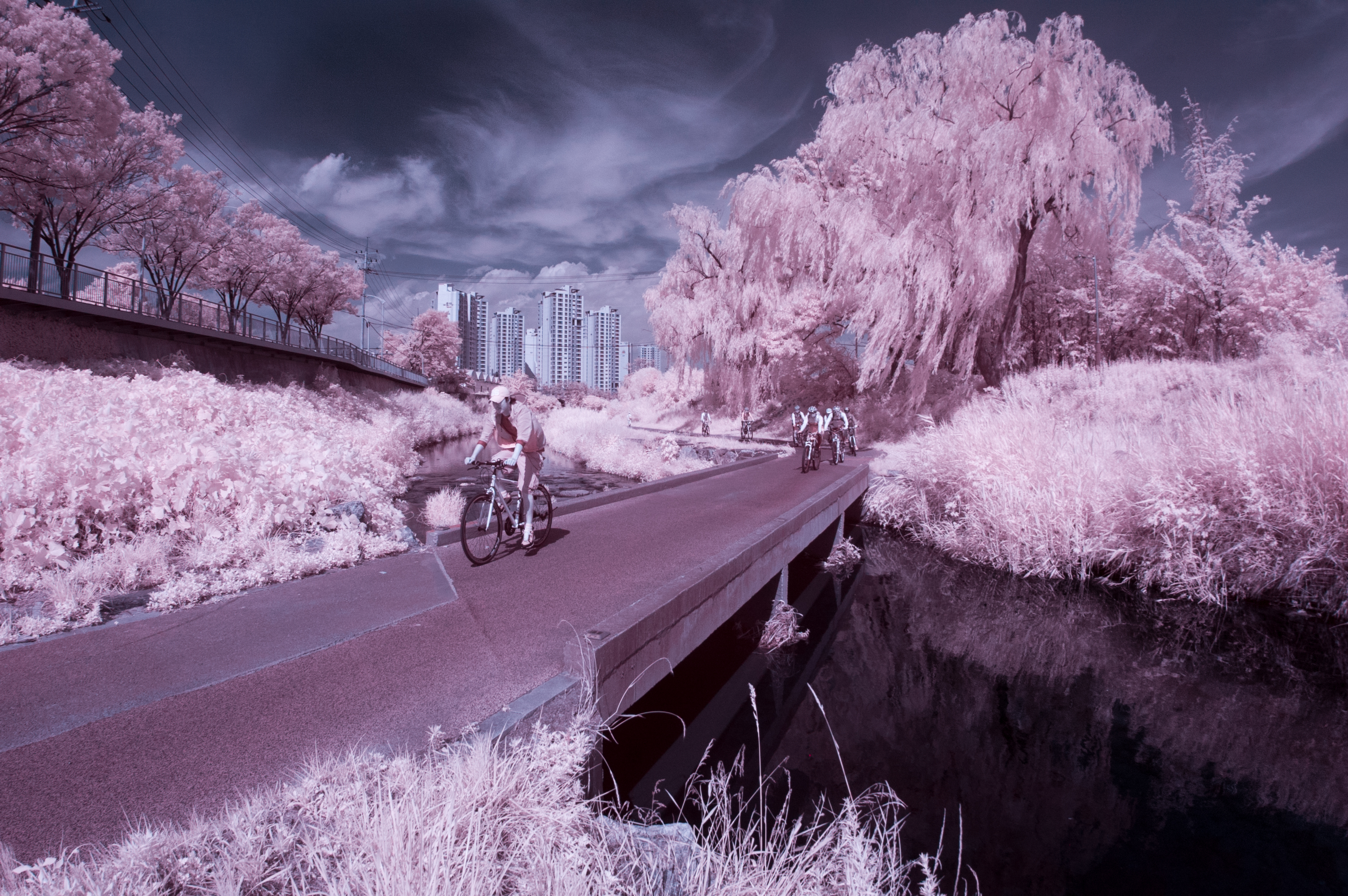 Infrared on the Tancheon
